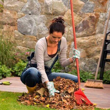 Работы в саду огороде сентябрь