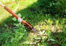 Садовые работы июль