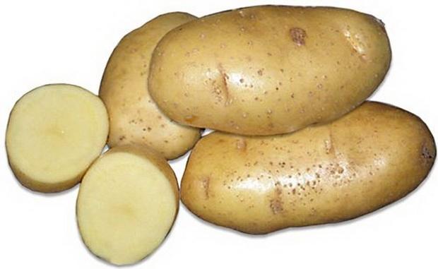 Белорусская красавица сорт картофеля «Янка»
