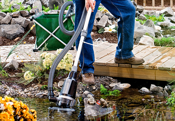Очистка пруда своими руками