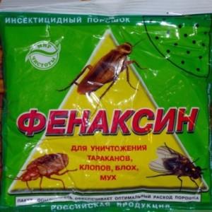Избавляемся от муравьев на участке и в доме
