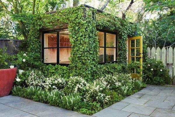 Вертикальное озеленение дома и участка