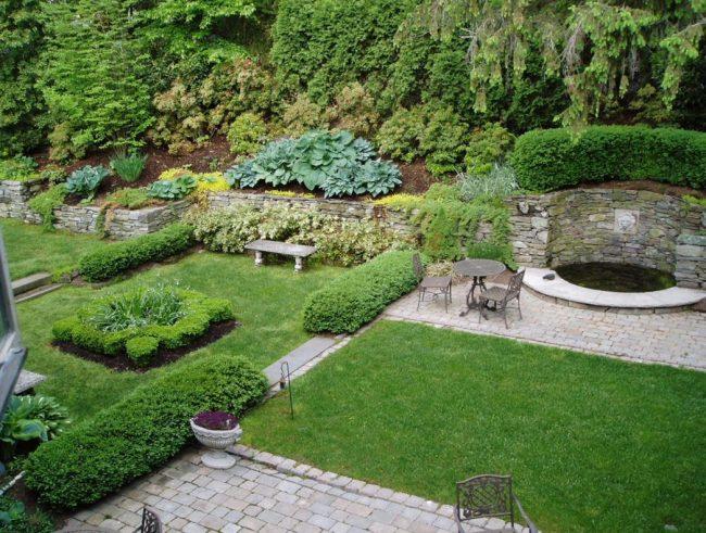 Оформление склонов альпийского сада с помощью декоративной хосты